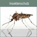 Insektenschutz nach Maß